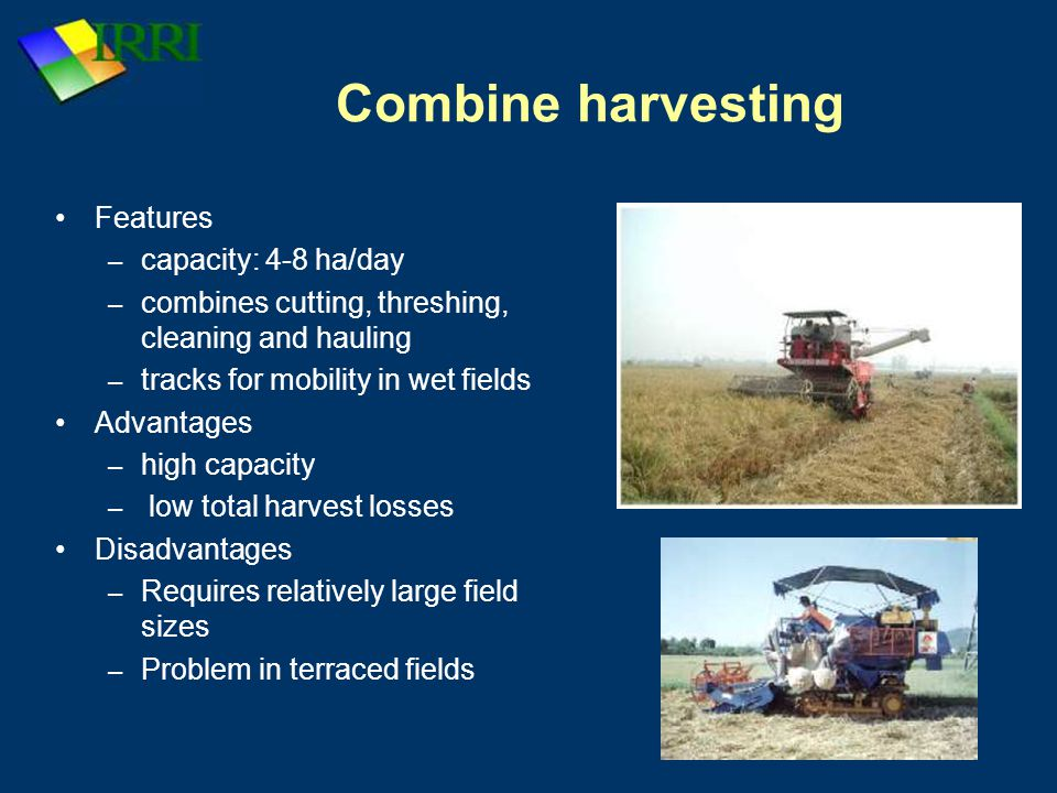 Combine harvesting Features capacity: 4-8 ha/day