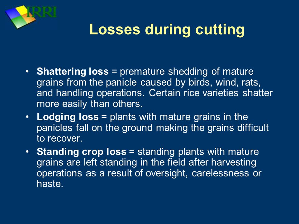 Losses during cutting