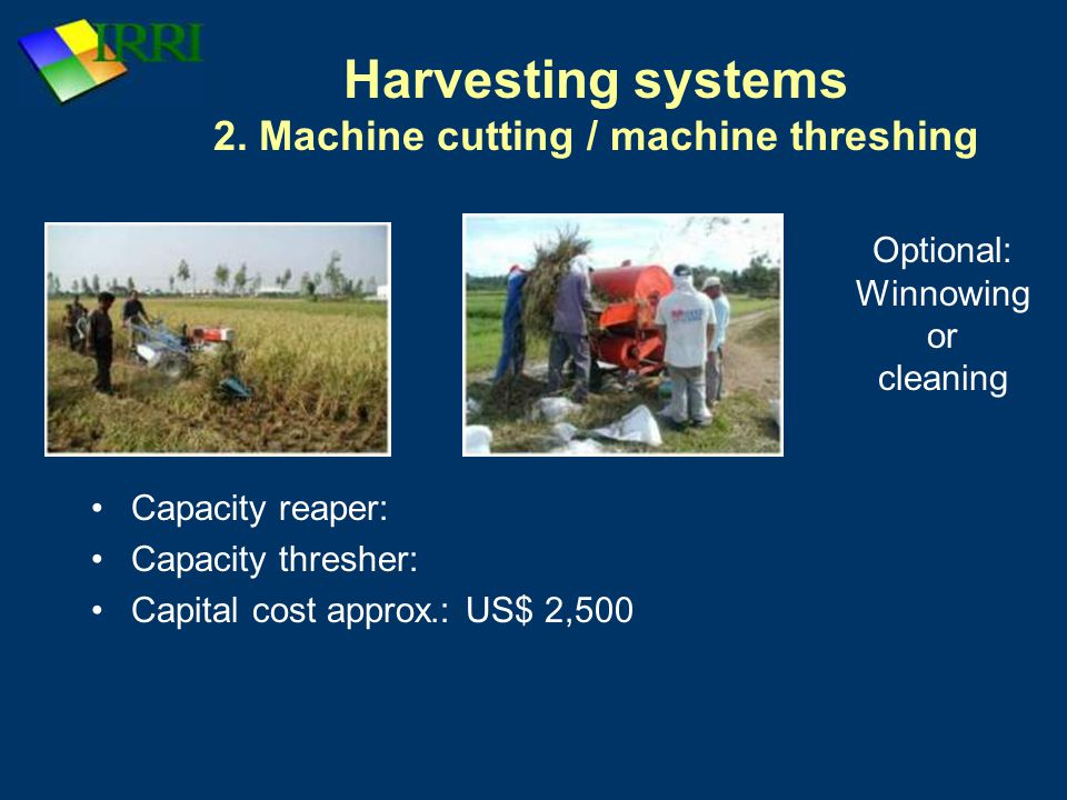 Harvesting systems 2. Machine cutting / machine threshing