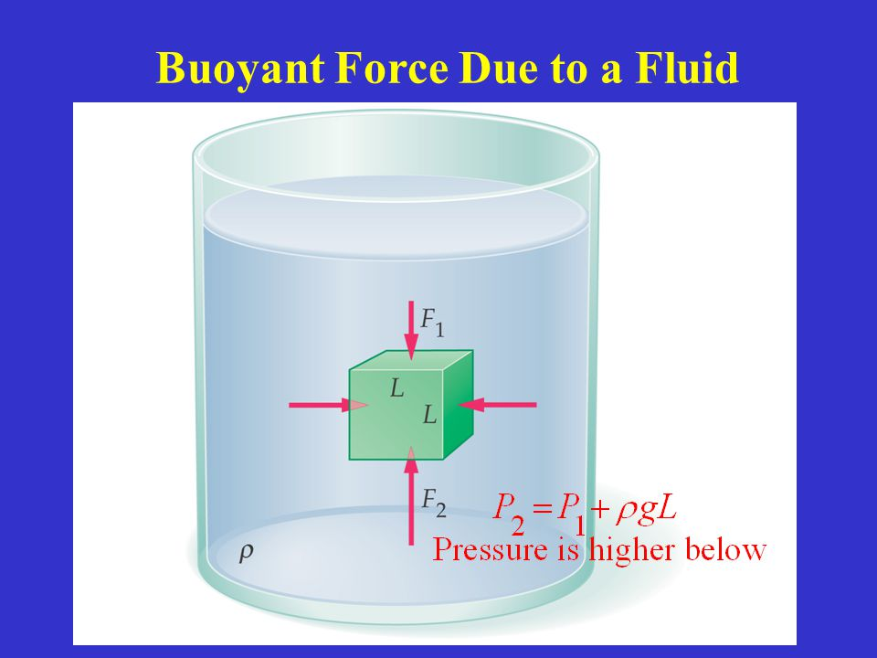 Buoyant Force Due to a Fluid