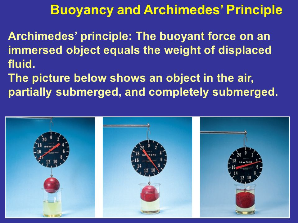 Buoyancy and Archimedes' Principle