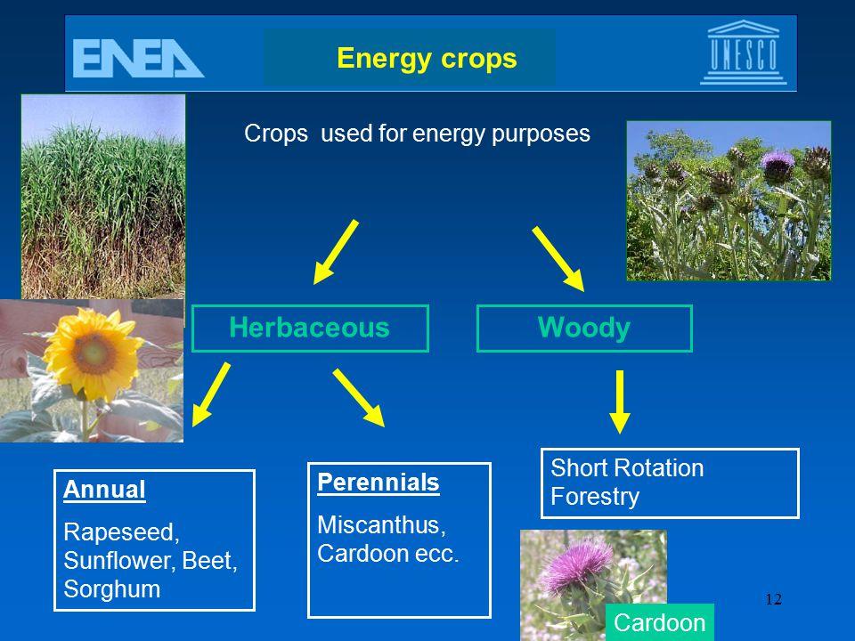 Energy crops Herbaceous Woody