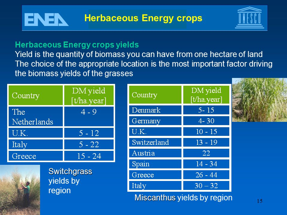 Herbaceous Energy crops