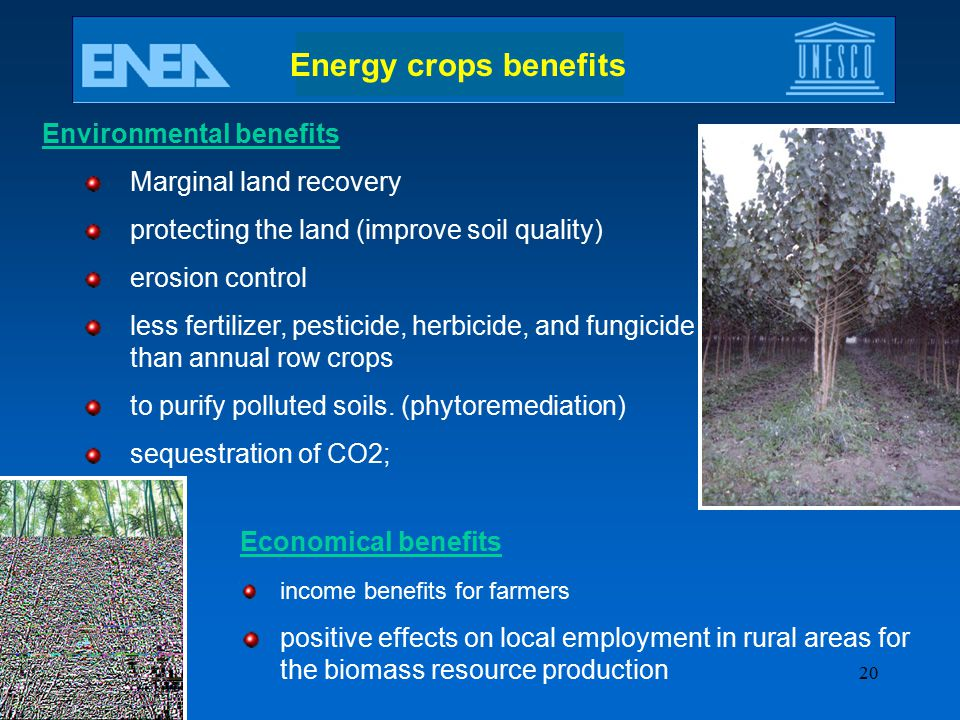 Energy crops benefits Environmental benefits Marginal land recovery