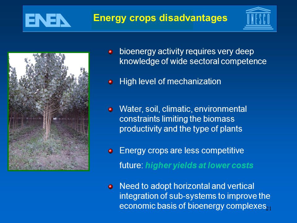 Energy crops disadvantages