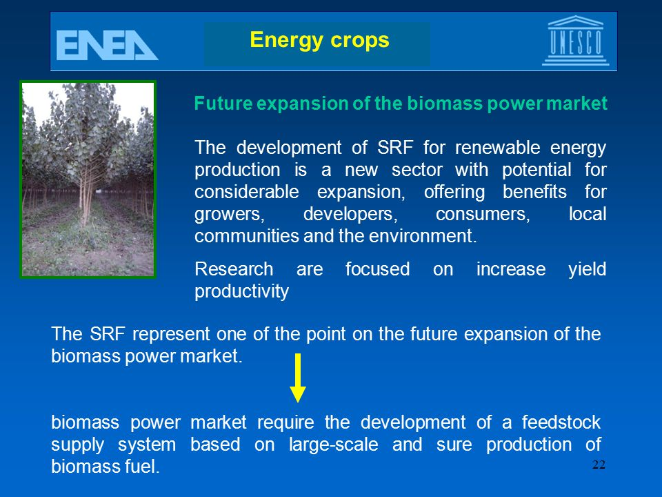 Future expansion of the biomass power market