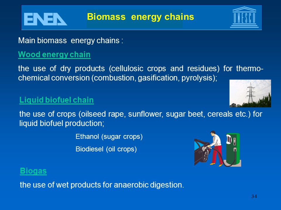 Biomass energy chains Main biomass energy chains : Wood energy chain