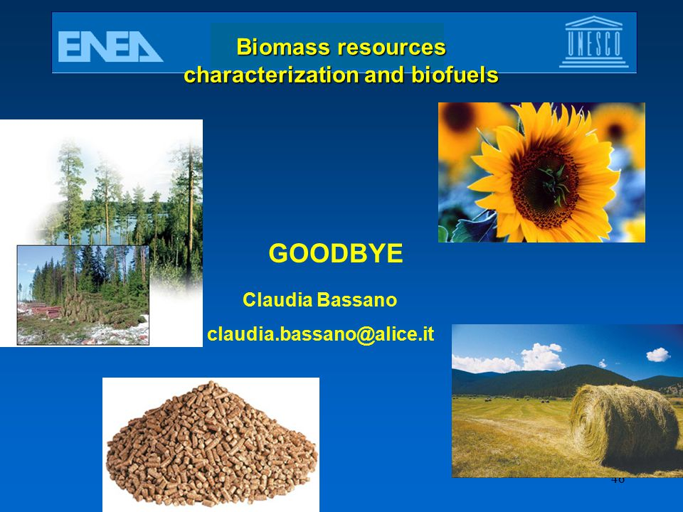 Biomass resources characterization and biofuels