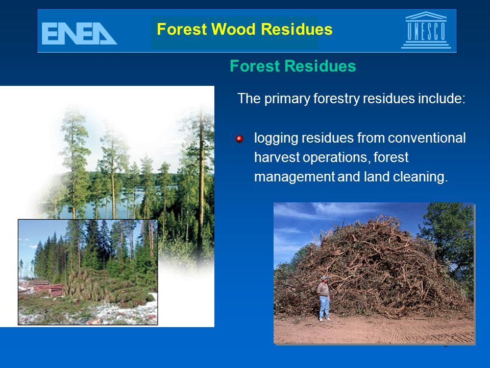 Forest Wood Residues Forest Residues