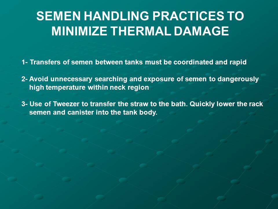 SEMEN HANDLING PRACTICES TO MINIMIZE THERMAL DAMAGE