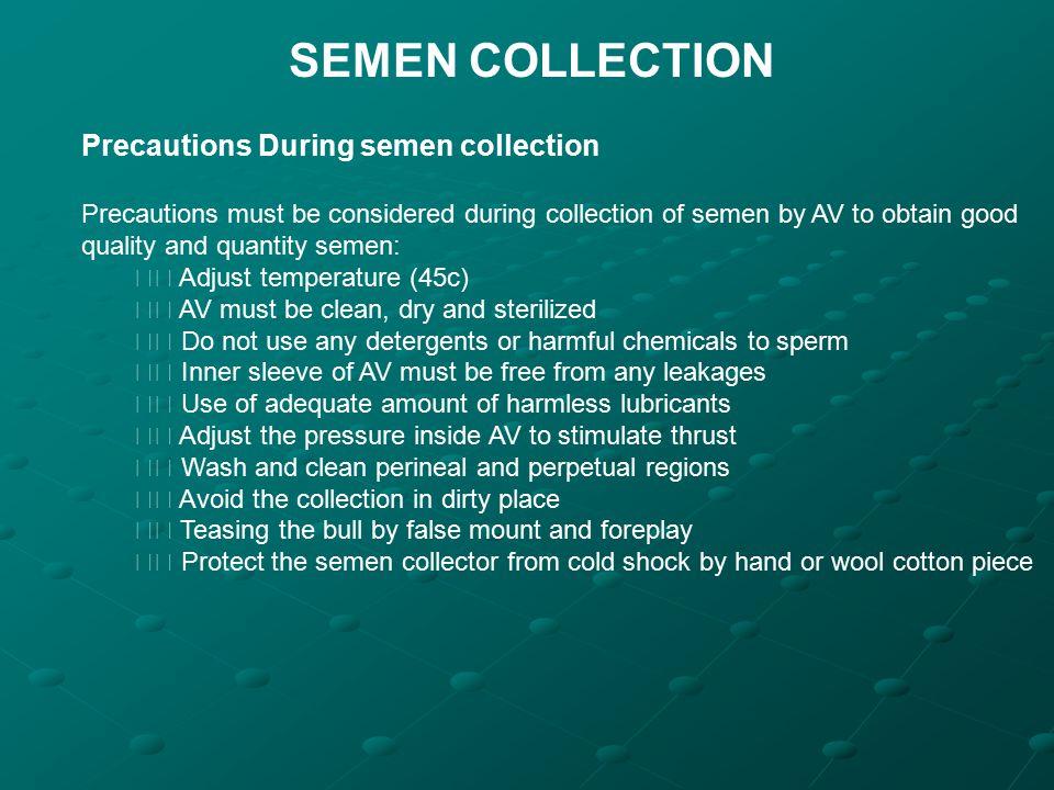 SEMEN COLLECTION Precautions During semen collection