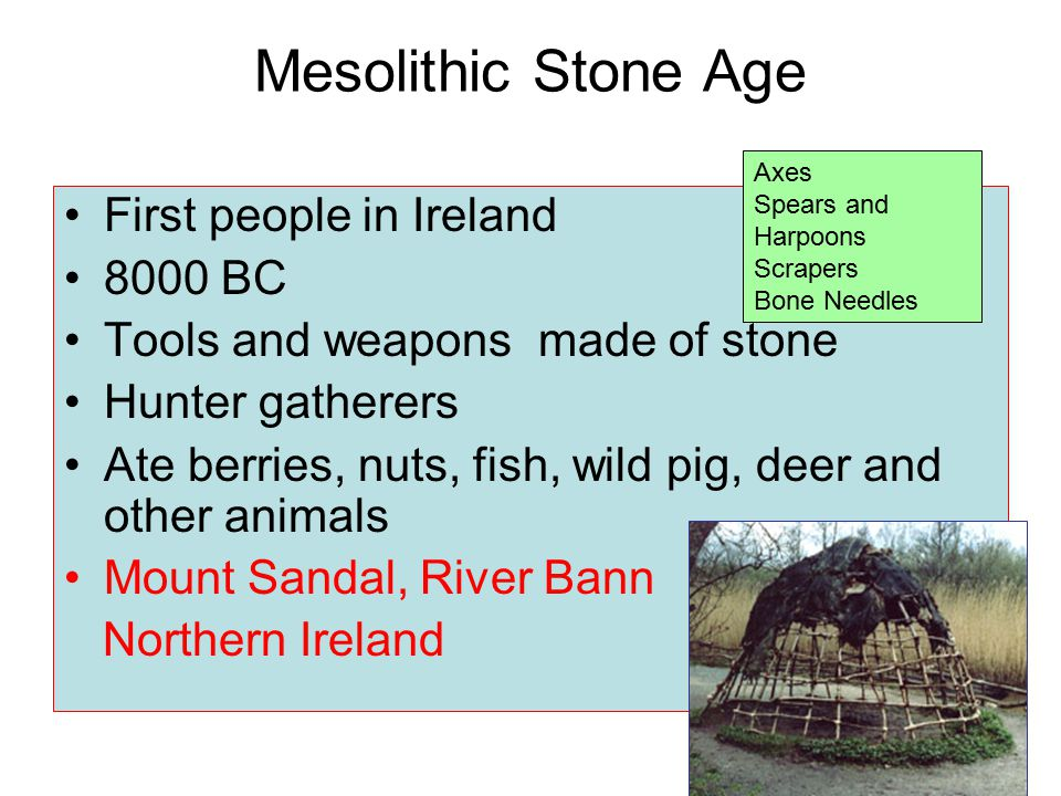 Mesolithic Stone Age First people in Ireland 8000 BC