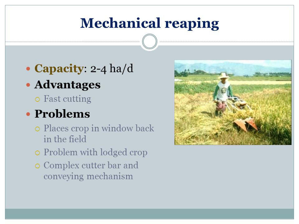 Mechanical reaping Capacity: 2-4 ha/d Advantages Problems Fast cutting
