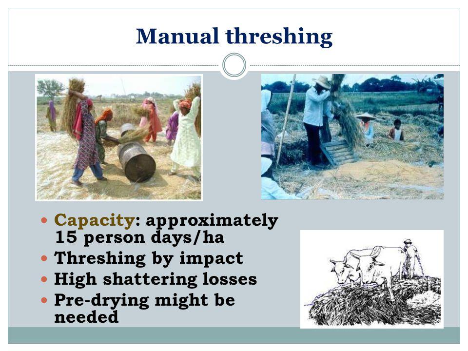 Manual threshing Capacity: approximately 15 person days/ha