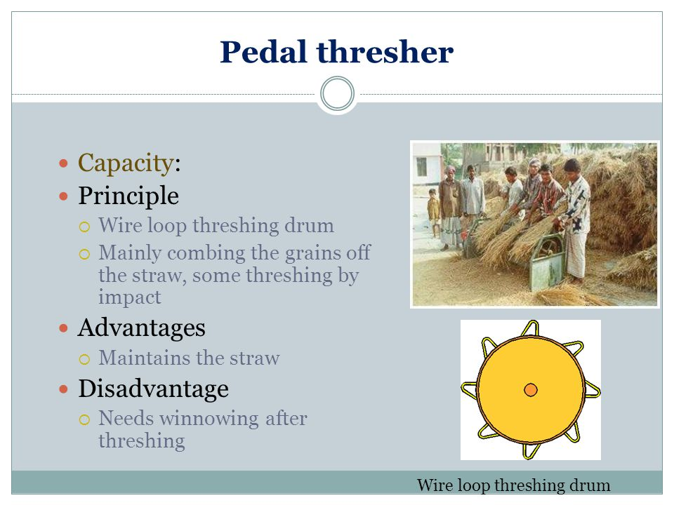 Pedal thresher Capacity: Principle Advantages Disadvantage