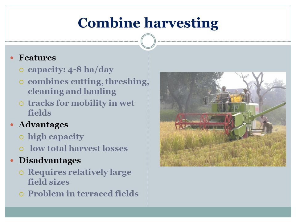 Combine harvesting Features capacity: 4-8 ha/day