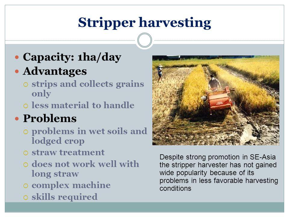 Stripper harvesting Capacity: 1ha/day Advantages Problems