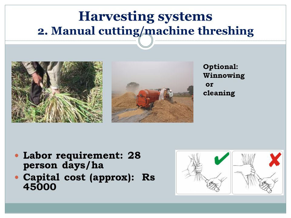 Harvesting systems 2. Manual cutting/machine threshing