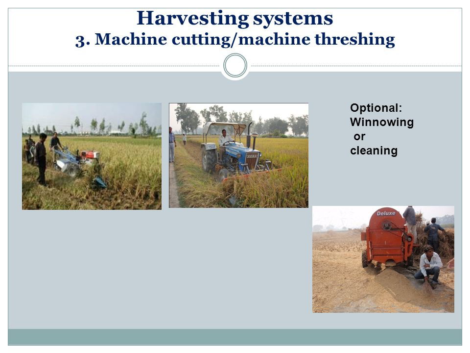Harvesting systems 3. Machine cutting/machine threshing