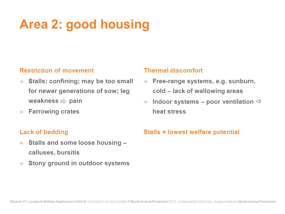 Area 2: good housing Restriction of movement Thermal discomfort