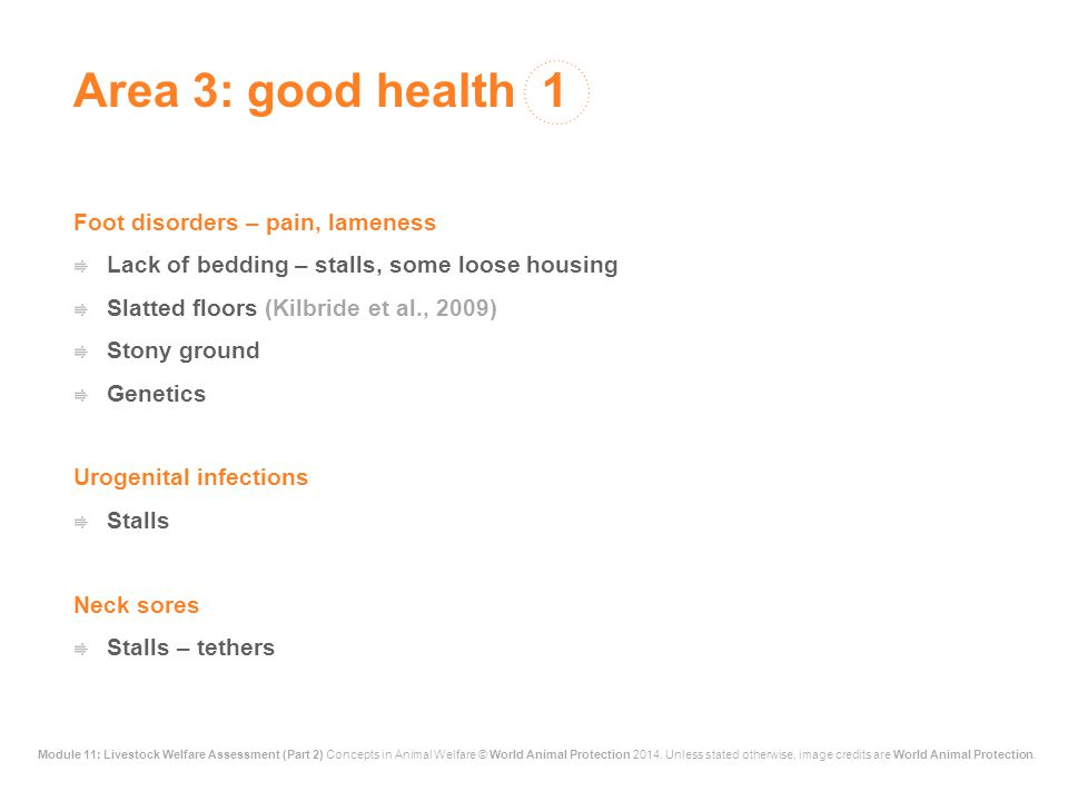 Area 3: good health 1 Foot disorders – pain, lameness