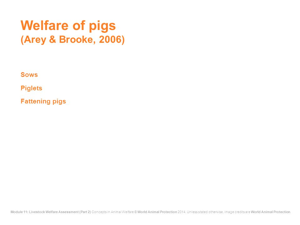 Welfare of pigs (Arey & Brooke, 2006)
