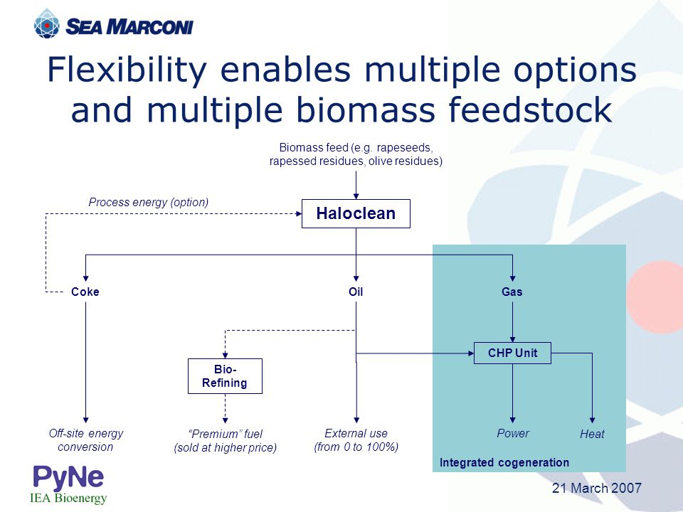 Flexibility enables multiple options and multiple biomass feedstock