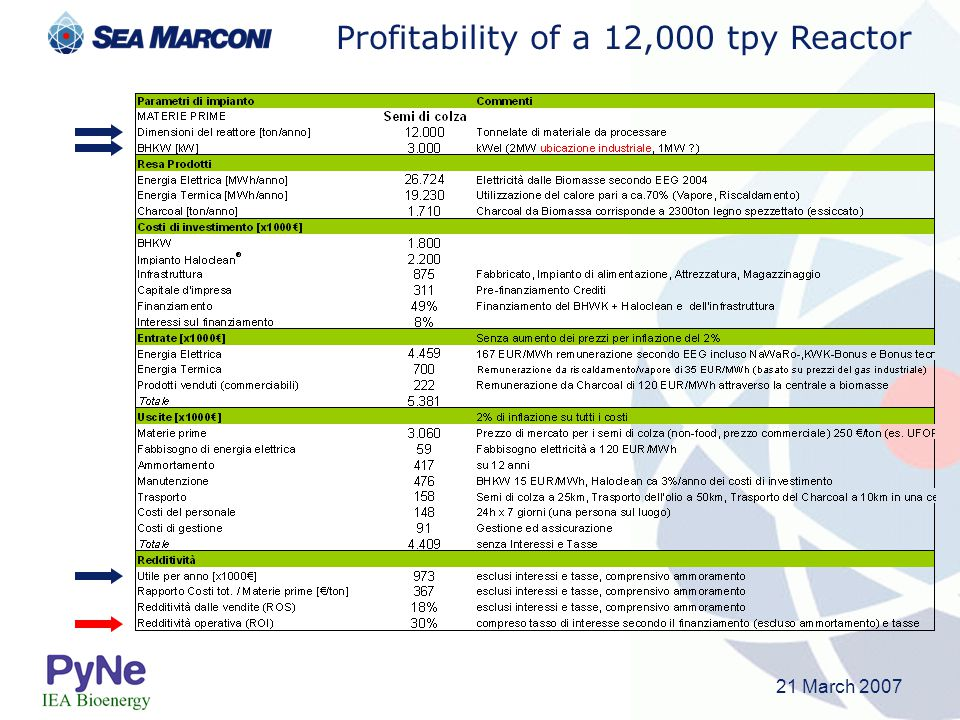 Profitability of a 12,000 tpy Reactor