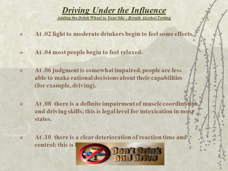 Driving Under the Influence Adding the Drink Wheel to Your Site - Breath Alcohol Testing