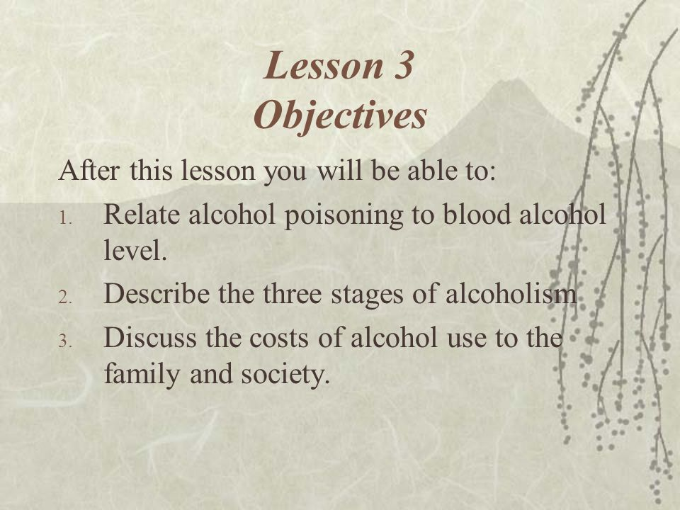 Lesson 3 Objectives After this lesson you will be able to: