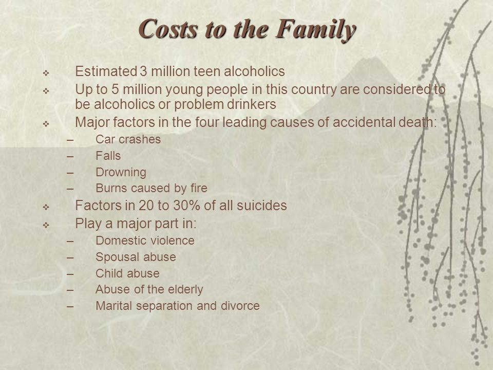 Costs to the Family Estimated 3 million teen alcoholics