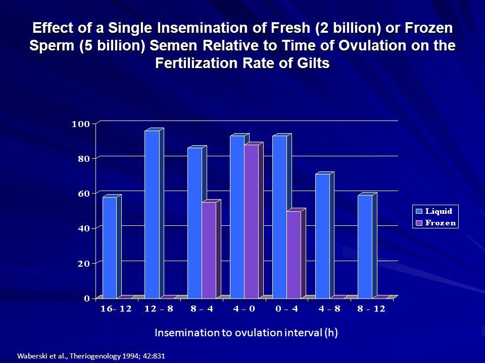 Effect of a Single Insemination of Fresh (2 billion) or Frozen Sperm (5 billion) Semen Relative to Time of Ovulation on the Fertilization Rate of Gilts