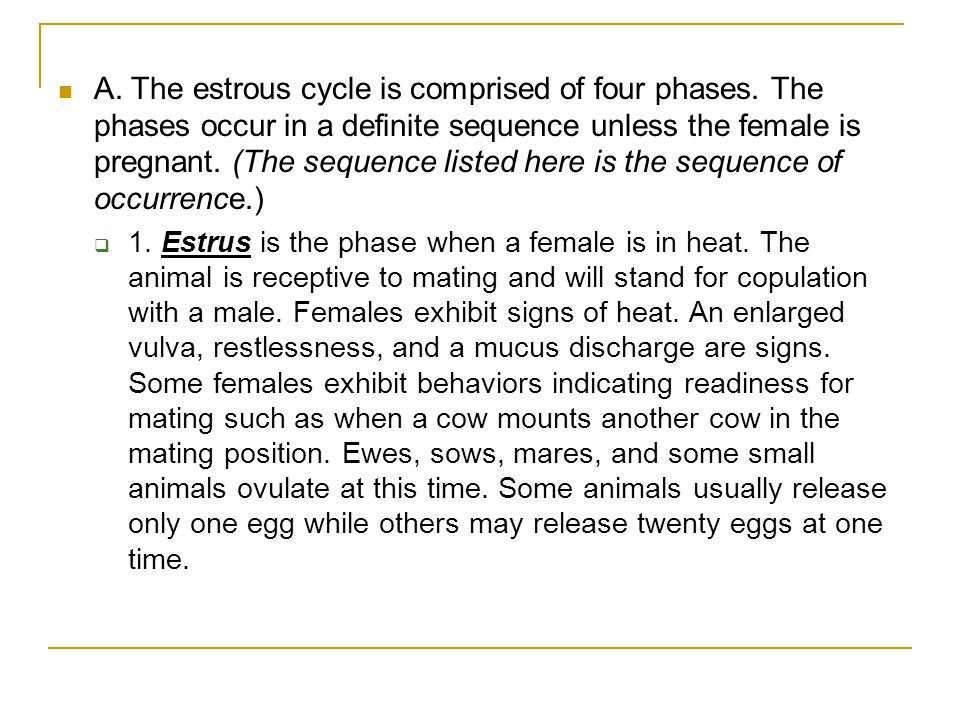A. The estrous cycle is comprised of four phases