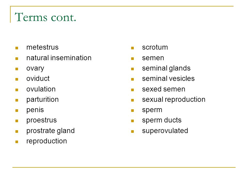 Terms cont. metestrus natural insemination ovary oviduct ovulation