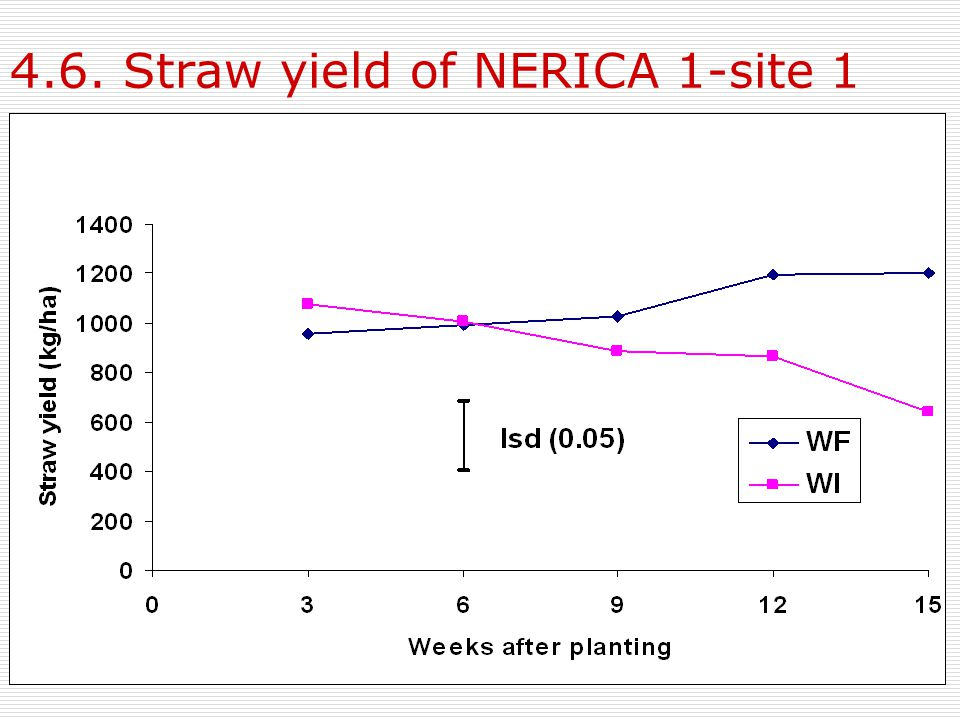 4.6. Straw yield of NERICA 1-site 1