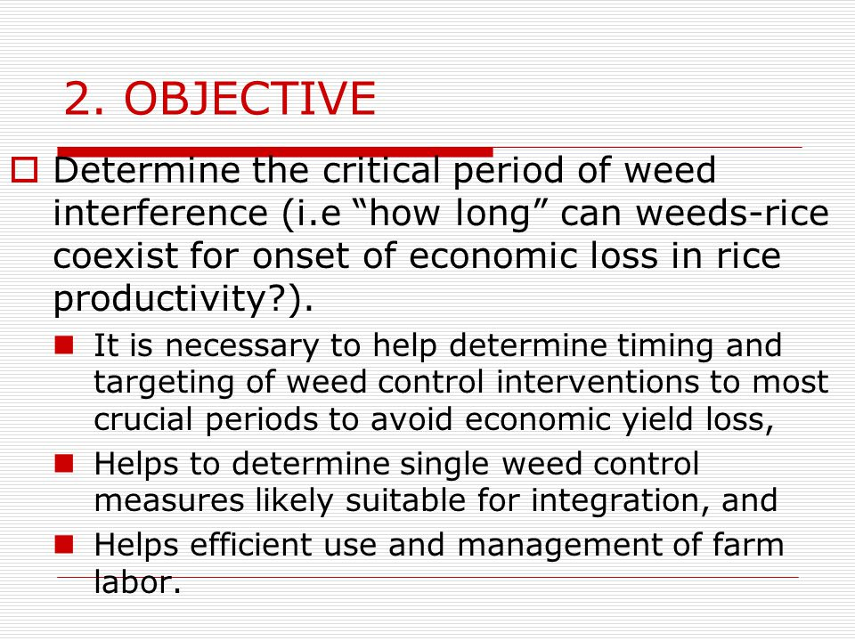 2. OBJECTIVE