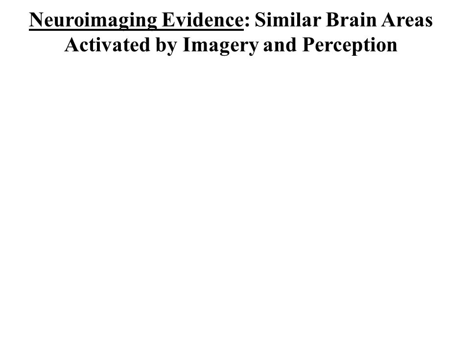 Neuroimaging Evidence: Similar Brain Areas Activated by Imagery and Perception