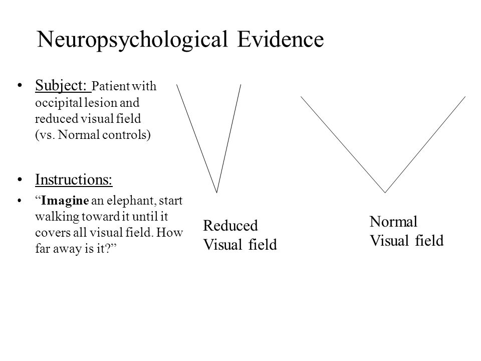 Neuropsychological Evidence