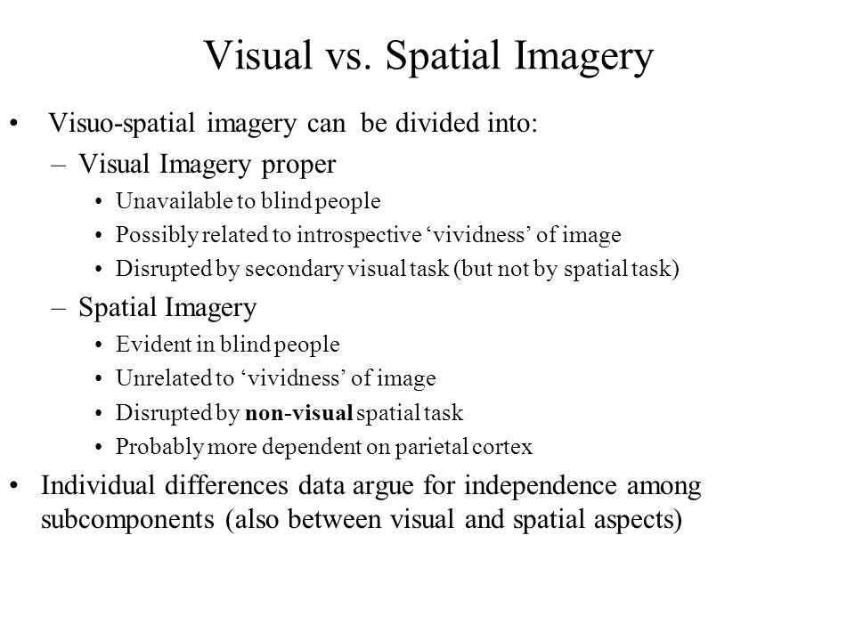 Visual vs. Spatial Imagery