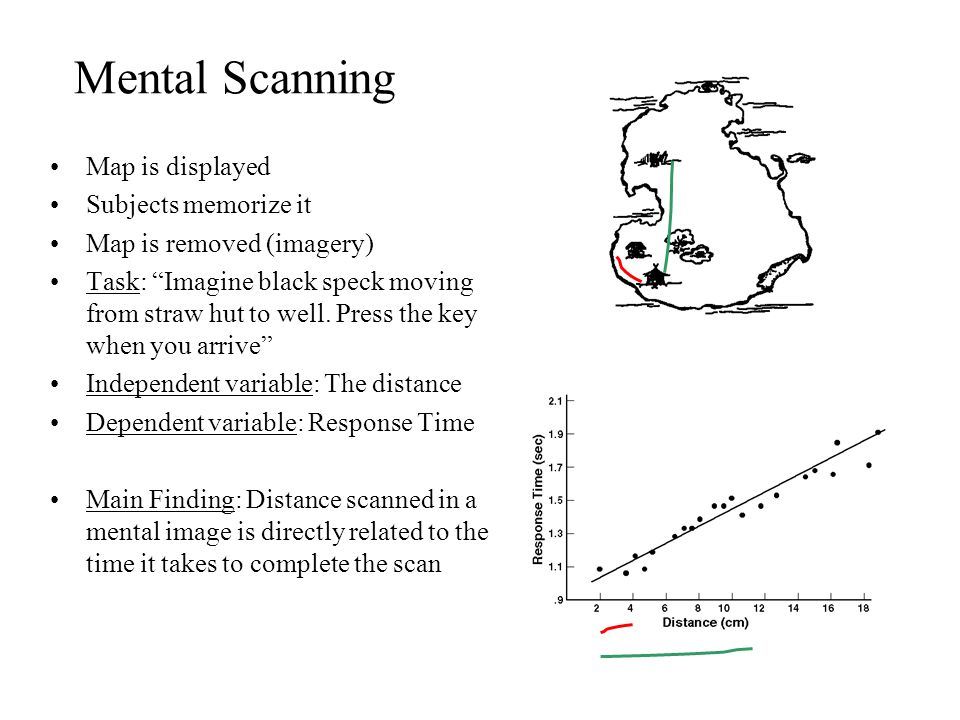 Mental Scanning Map is displayed Subjects memorize it