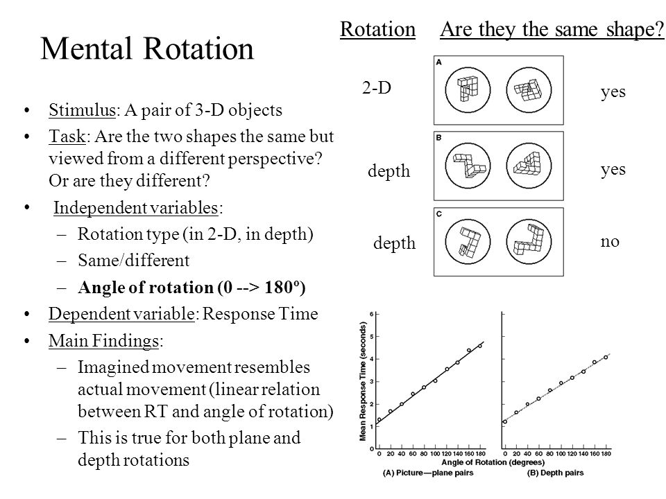 Mental Rotation Rotation Are they the same shape 2-D yes