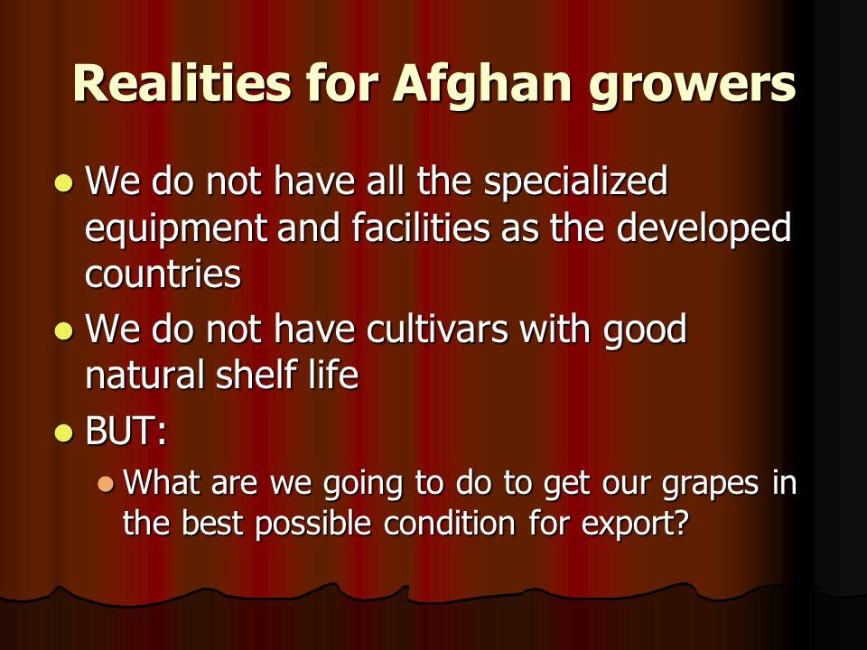 Realities for Afghan growers