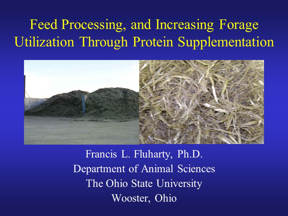 Feed Processing, and Increasing Forage Utilization Through Protein Supplementation