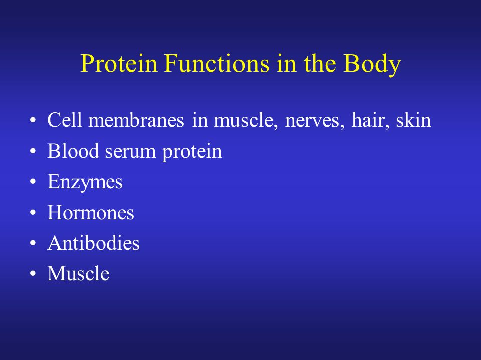 Protein Functions in the Body