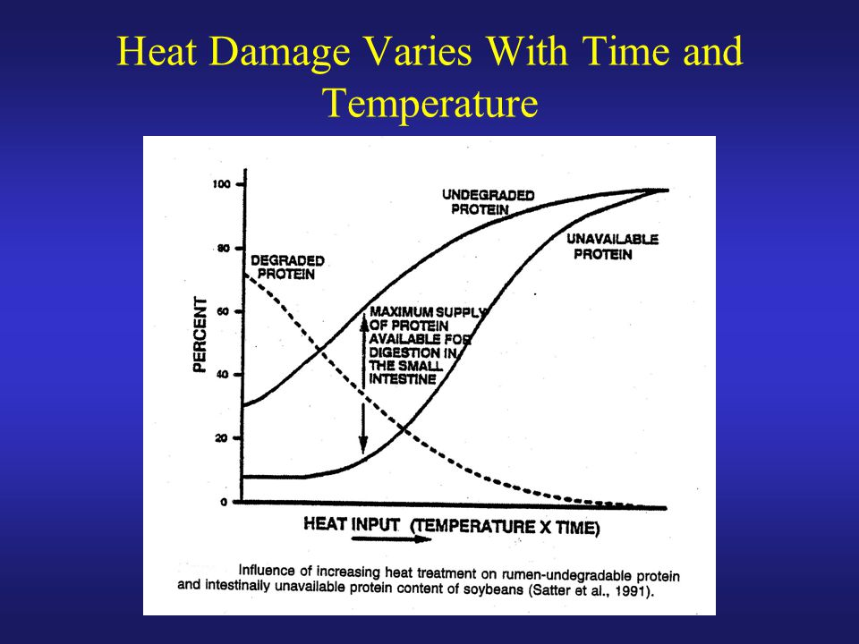 Heat Damage Varies With Time and Temperature