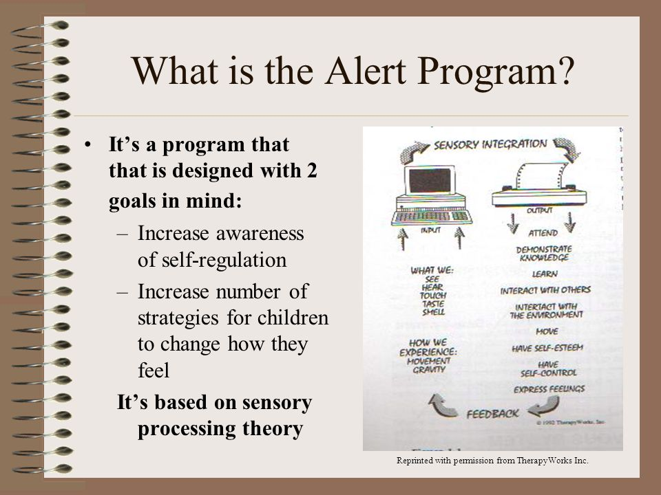 What is the Alert Program