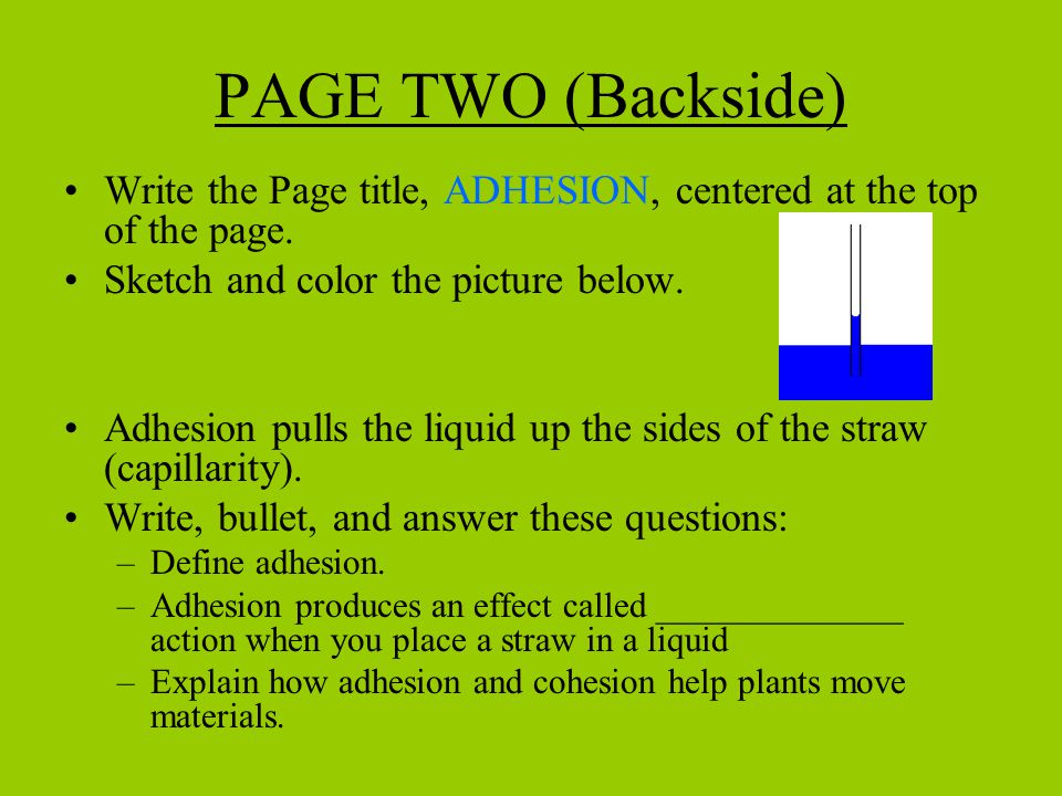 PAGE TWO (Backside) Write the Page title, ADHESION, centered at the top of the page. Sketch and color the picture below.
