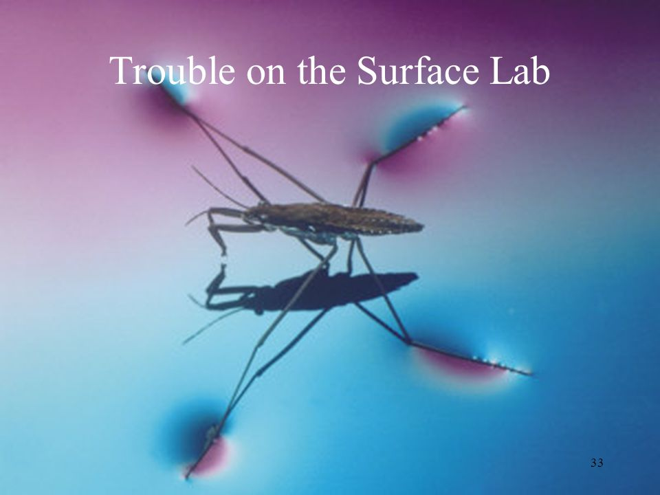 Trouble on the Surface Lab