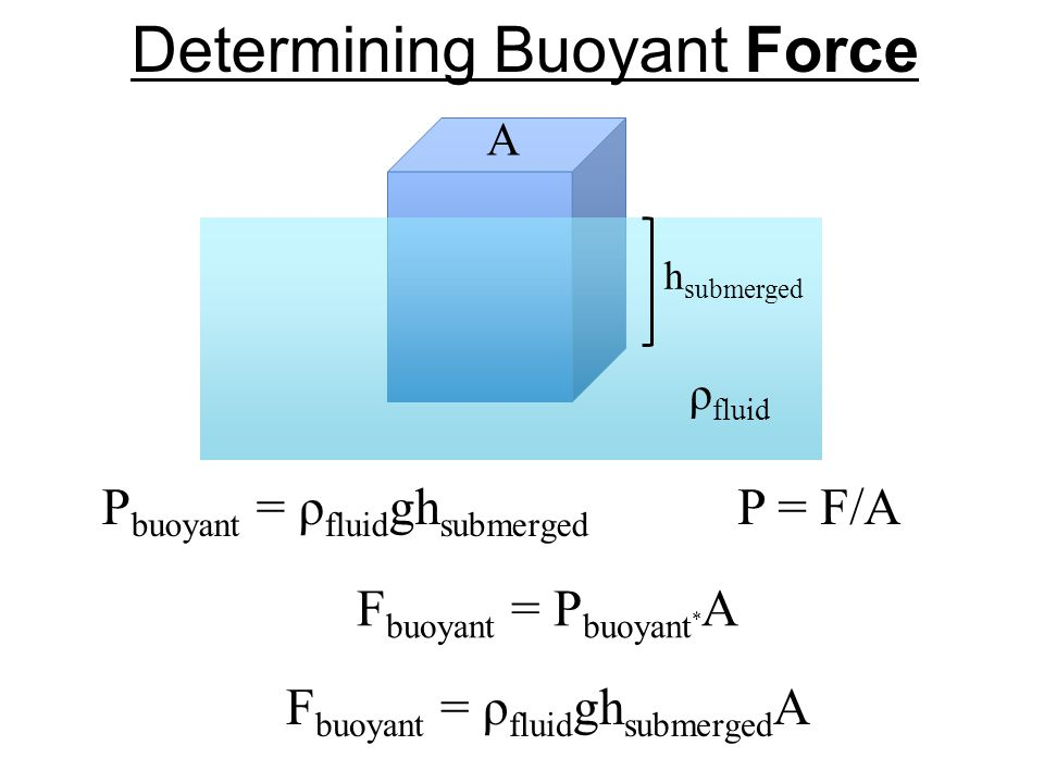 Determining Buoyant Force