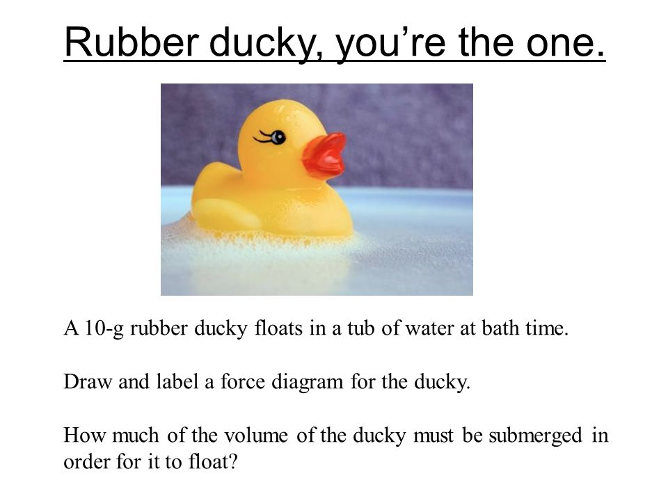 Rubber ducky, you're the one.